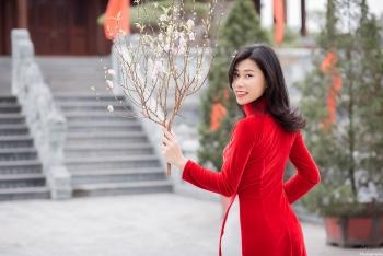 peach blossoms flower of vietnamese lunar new year