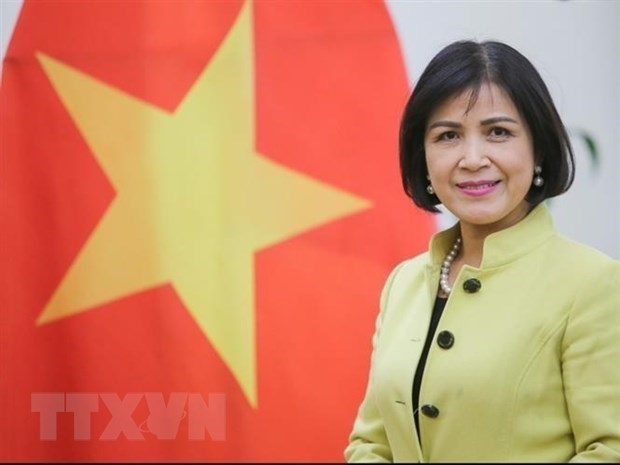 Vietnam supports Myanmar's democratic transition
