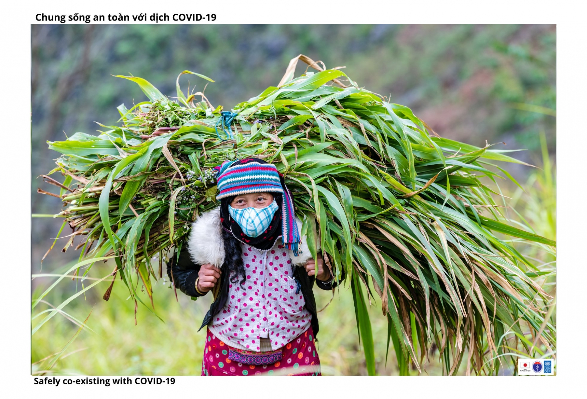 People in Ha Giang develop sustainable economy while combat COVID 19 effectively