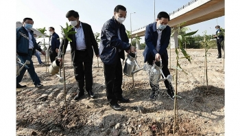 Tree-planting festival launched nationwide