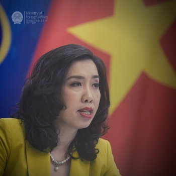 citizen protection provided to vietnamese abroad