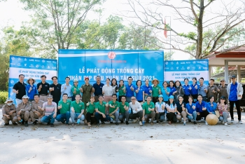 ngos participate in tree planting festival in quang tri