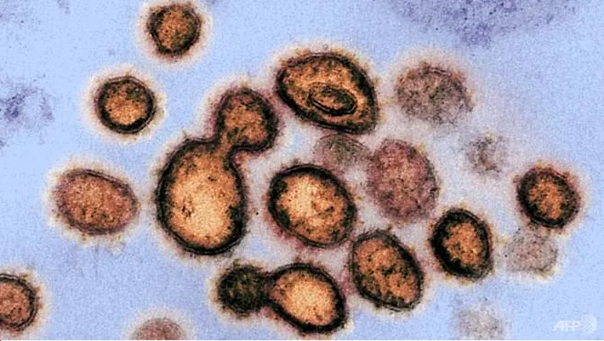 how to ward off coronavirus in rooms and toilets