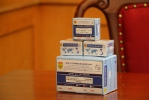vietnams exported covid 19 test kits meet european standards