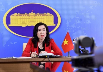 Vietnam considers all options to assist citizens stranded overseas