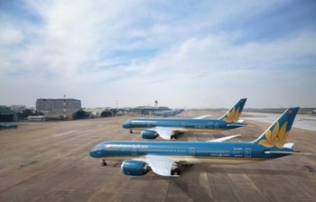 Two Vietnamese airlines cut domestic flights over COVID-19 fears