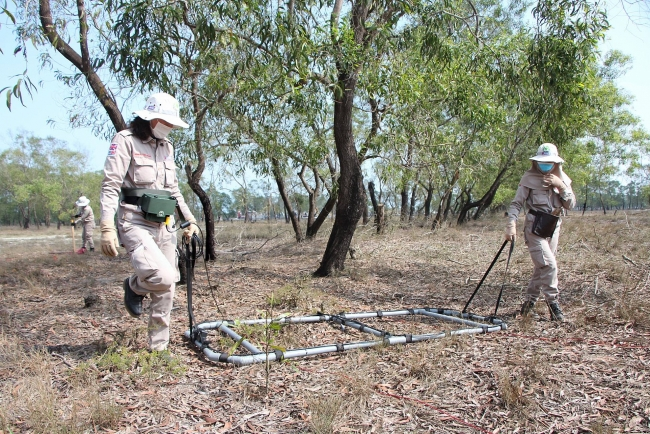 Quang Tri: Over 480 cluster munitions and UXOs safely destroyed