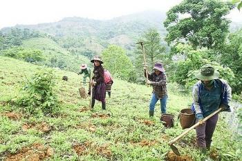 CARE to improve economic position of female ethnic minorities in Ha Giang