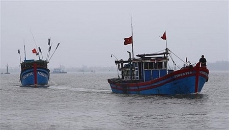 US seriously concerned over East Sea situation after Vietnamese ship sunk by China