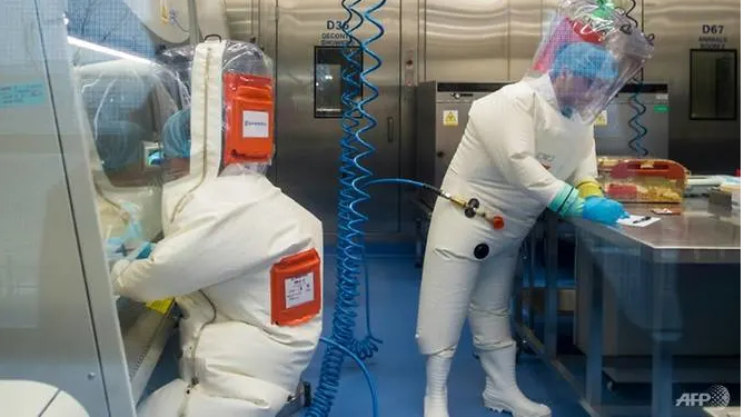wuhan lab the source of the coronavirus