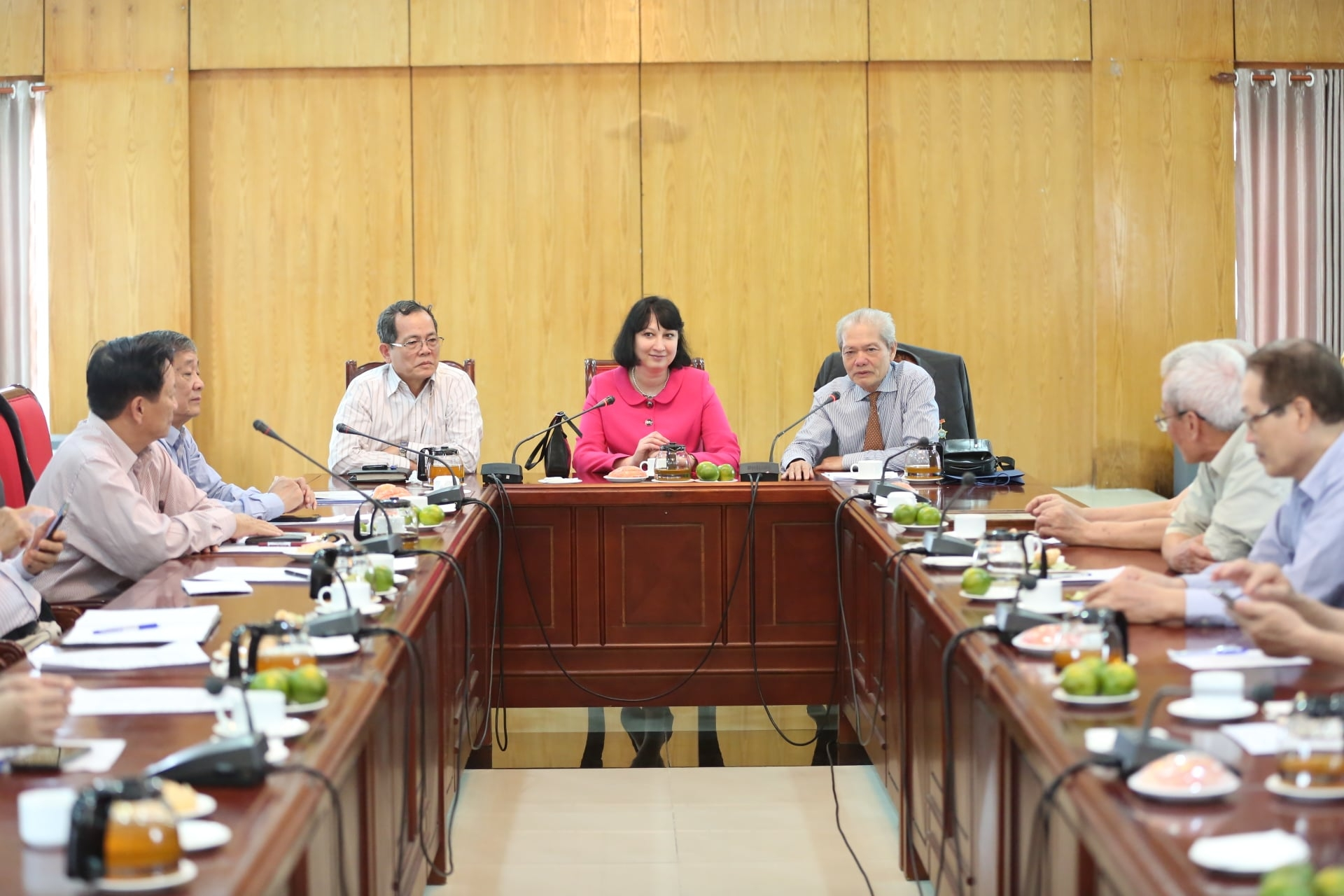 VUFO Chairwoman receives new Romanian Ambassador to Vietnam