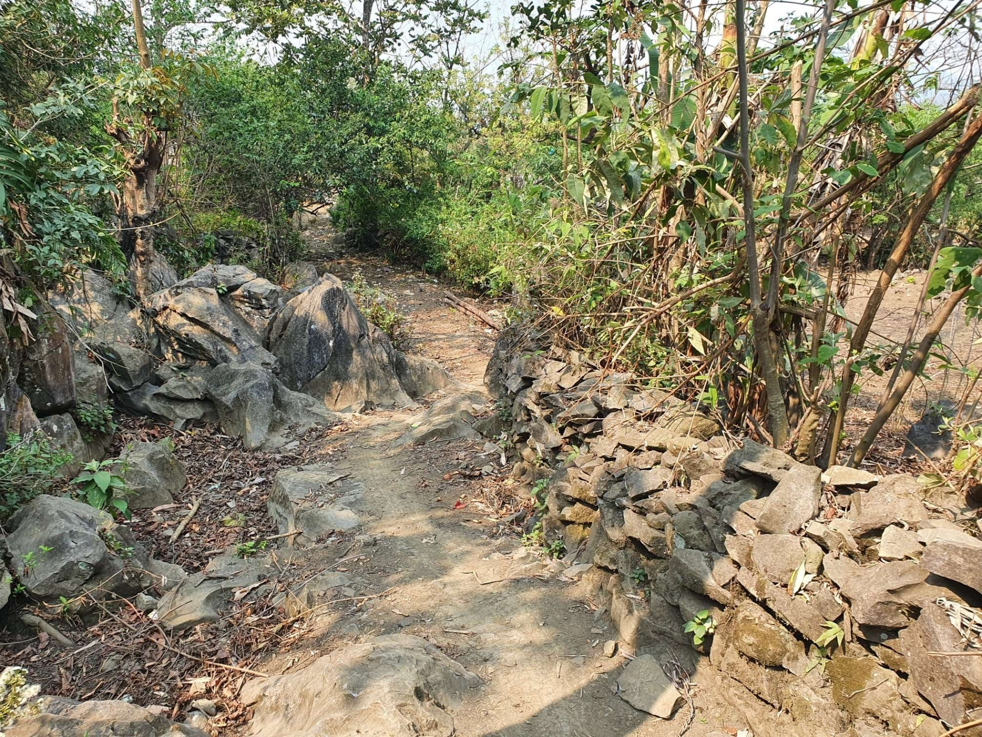 Before the road project, the old road was steep and rocky and would become muddy, especially during rainy days. Source: World Vision Vietnam