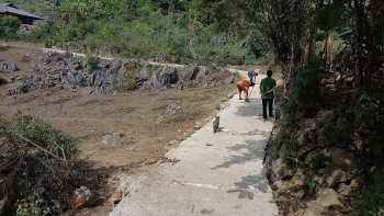 World Vision builds cement road to for remote village of Dien Bien