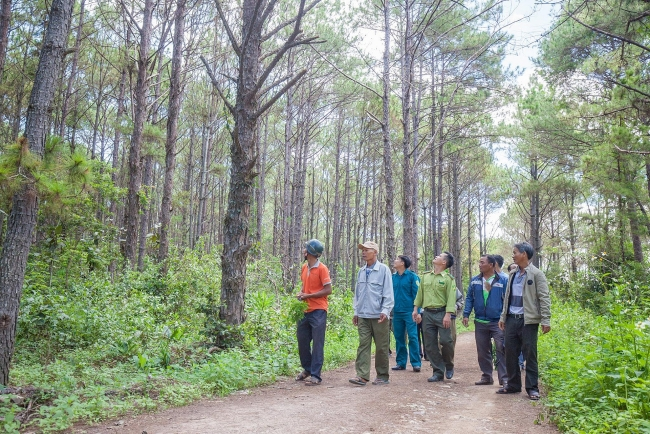 USAID Sustainable Forest Management and Biodiversity Conservation projects launched in Vietnam