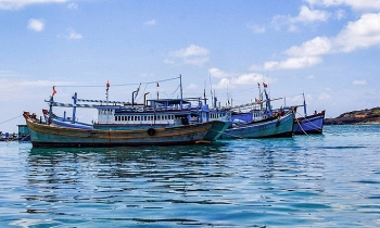 vietnam fisheries society strongly protests against chinas fishing ban on east sea