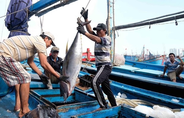 mard chinas fishing ban in east sea carries no weight whatsoever