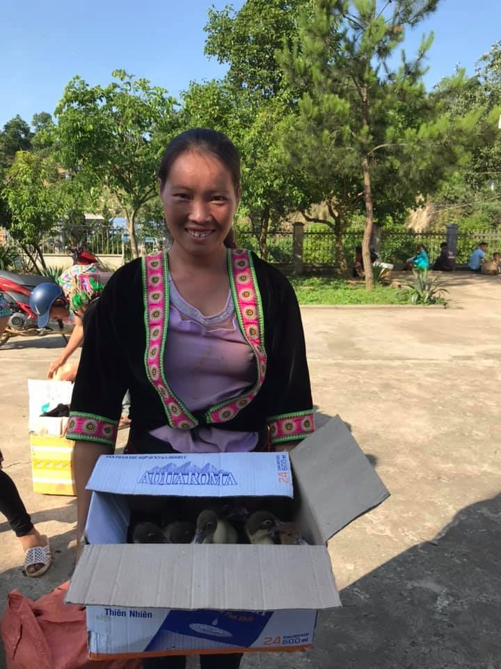 hki vietnam delivers over 1000 ducks to lai chaus impoverished villages