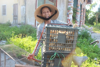 5000 baby chicks help generate sustainable income for the poor in hue