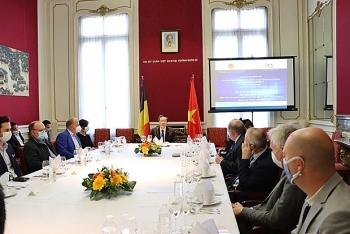 Experts: Belgium's exports to Vietnam still growing