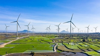 Denmark accompanies Vietnam in green and sustainable energy transformation