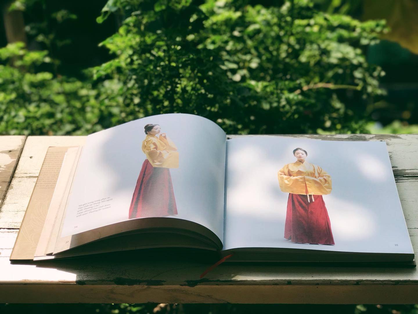 weaving a realm bilingual book introduces vietnams costumes from the 15th century