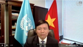 vietnam indonesia ask to resolve central africas root of instability