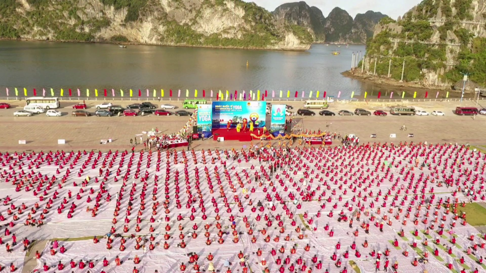 ha long bay over 3000 people join yoga performance