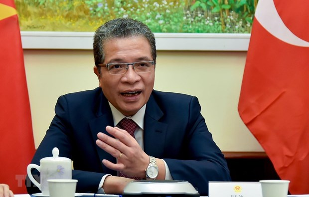 Vietnam, turkey seek measures to forge ties hinh anh 1