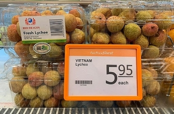 Lychee heads to EU market, expanding Vietnamese agricultural brands