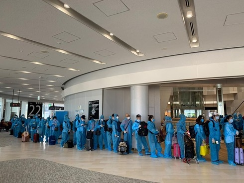 over 200 repatriated vietnamese from japan undergo quarantine in facilities