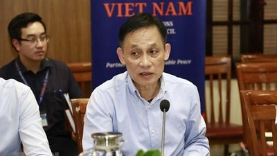 Deputy FM: Vietnam fulfills mission as UNSC non-permanent member in H1