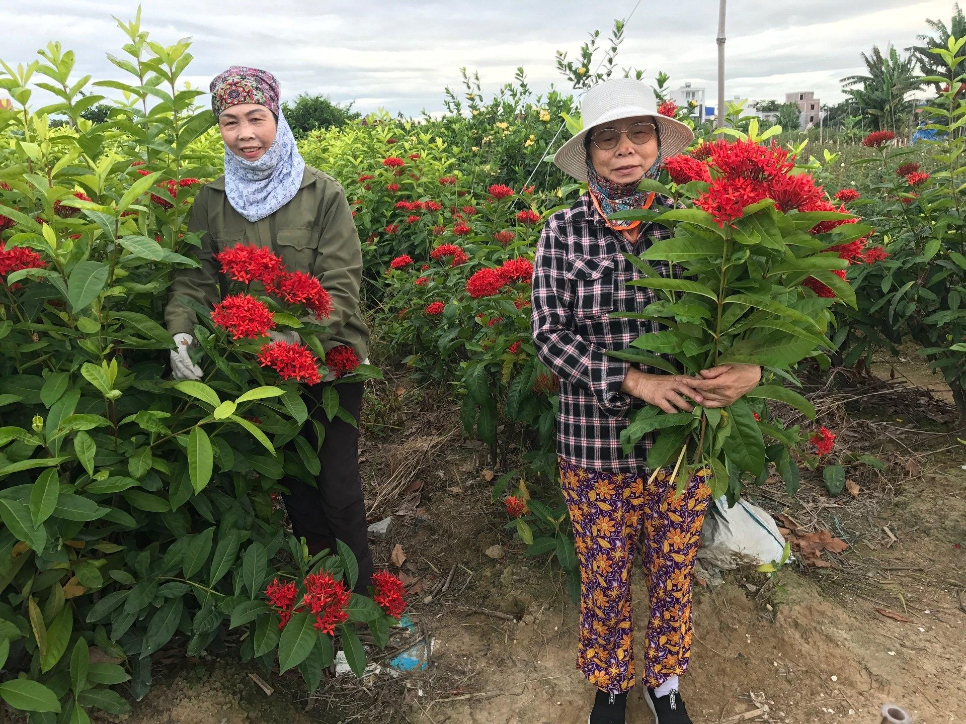 Self-Helping Intergenerational Club model in Vietnam became 2020 HAPI Grand Prize Winner