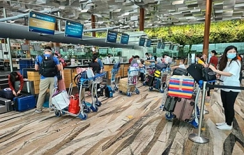 two flights bring home over 530 citizens from singapore taiwan china