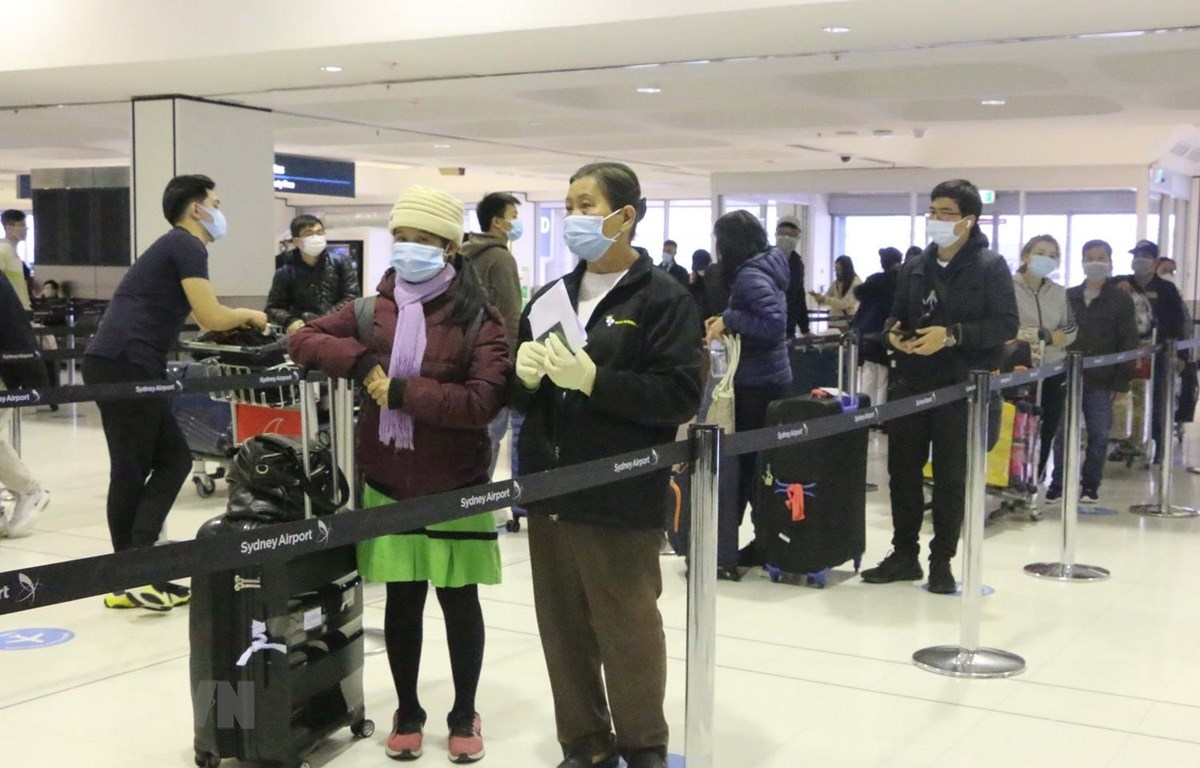 covid 19 latest news 340 citizens return safely from australia as vietnams confirmed cases pass 800 mark