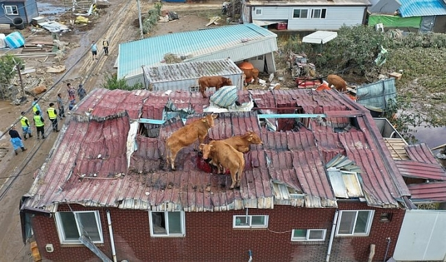 Floods bring further hardship to Vietnamese in RoK amid COVID-19 pandemic