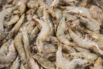 china alarmed as coronavirus found on frozen seafood packaging