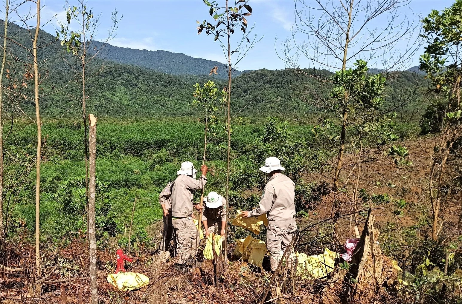 nearly 100 cluster munitions found in thua thien hue