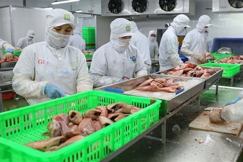 evfta first batch of shrimp from vietnam on its way to eu