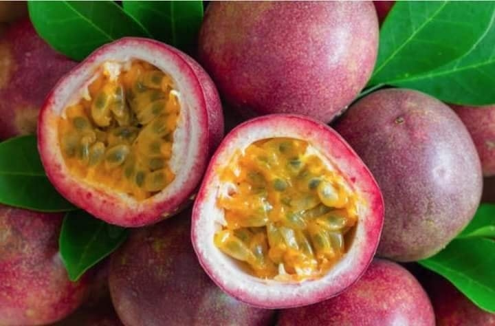 Boosting resilience to climate risks through improved farmer practice in passion fruit farming