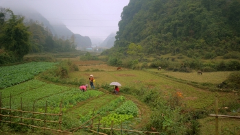 new zealand funded project boosts resilience to climate risks in cao bang