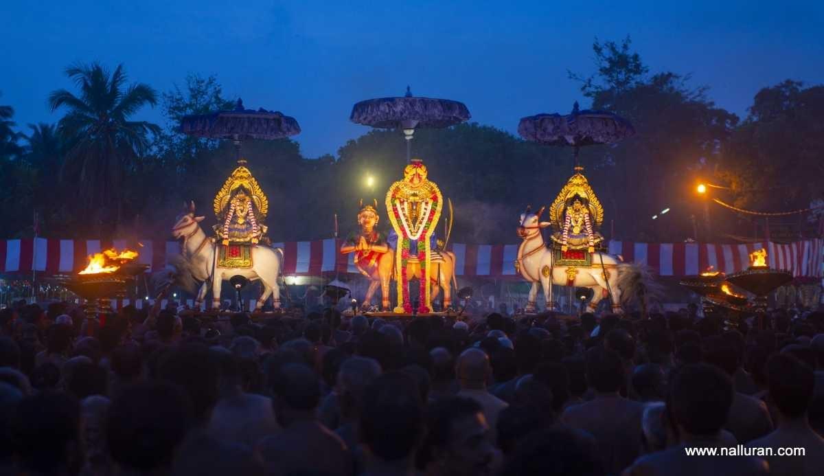 Vietnam, Sri Lanka step up to boost cooperation in tourism development