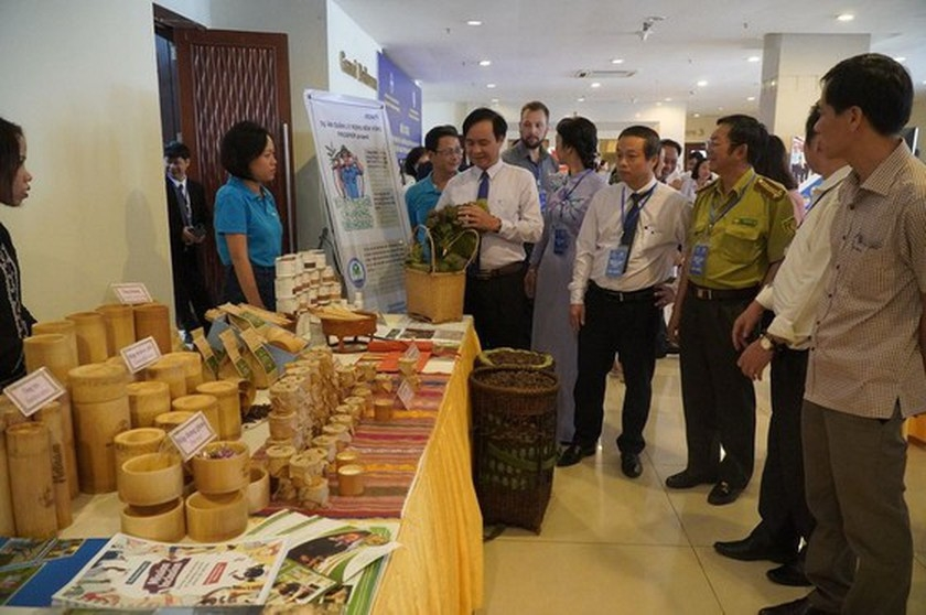 Six NGOs commit to provide USD 51-million non-refundable aid to Quang Tri
