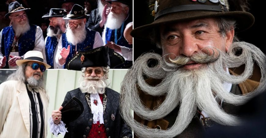 Check Out Facial Hair Creations at German Moustache and Beard Championships 2021