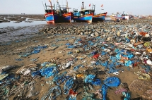 vietnam needs tougher regulations on single use plastic bags official