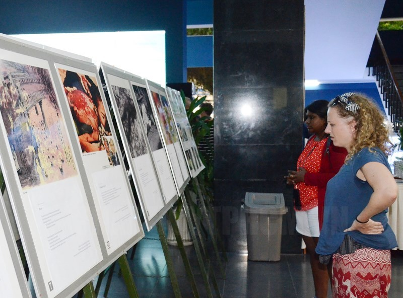 nearly 50 photos shed light on pain of vietnamese japanese war victims