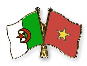vietnamese leaders congratulate algerian president on revolution day