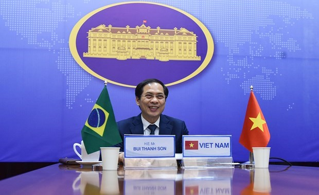 7th Vietnam – Brazil political consultation held hinh anh 1