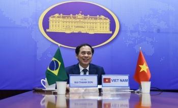 seventh vietnam brazil political consultation held