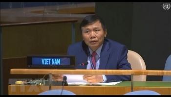 Vietnam supports UN Security Council reform