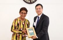 vietnam indonesia ties develop on solid foundation ambassador